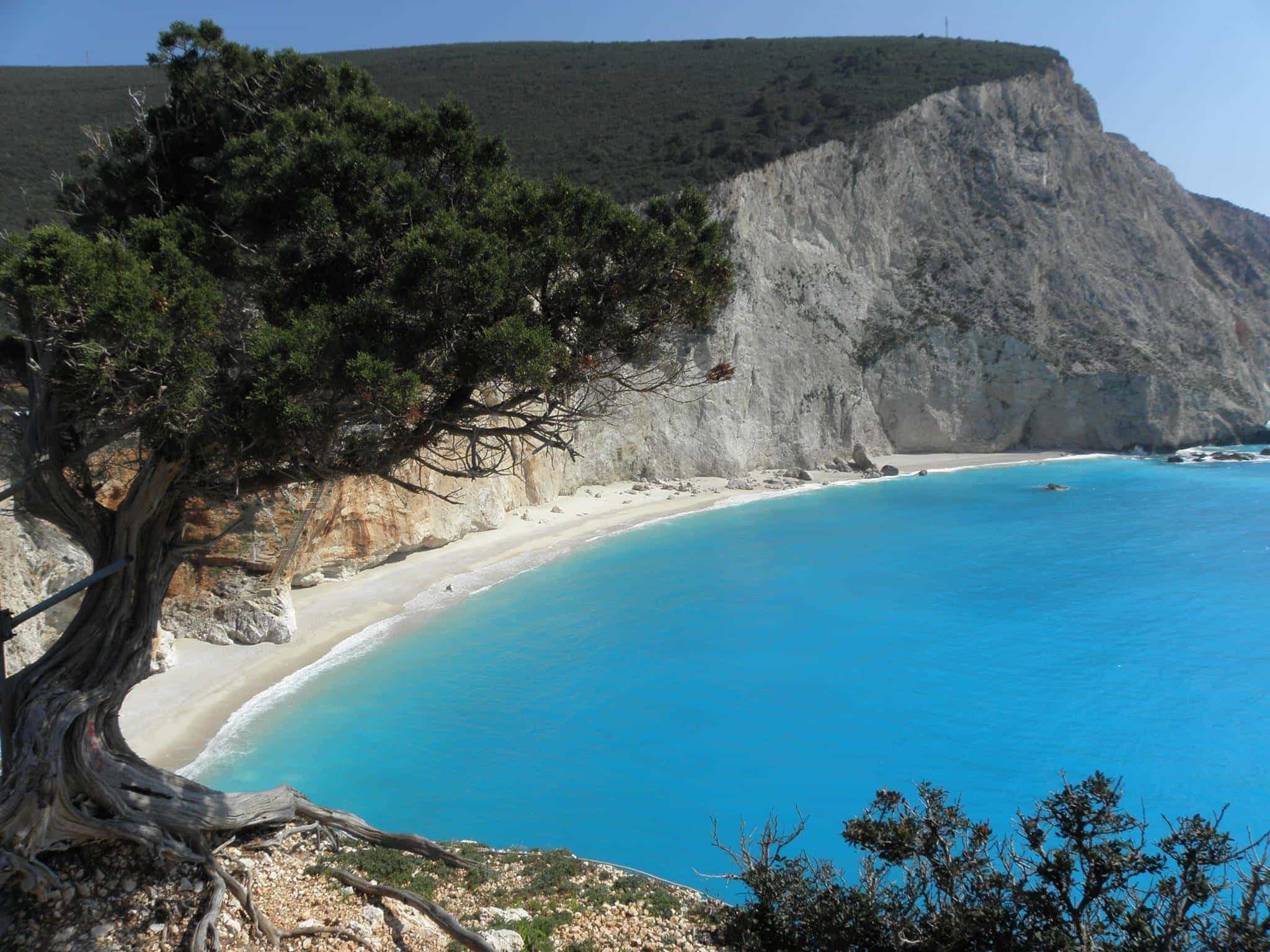lefkada-beaches-porto-katsiki-beach-up-tree